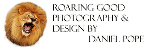 Roaring Good Photography & Design by Daniel T. Pope